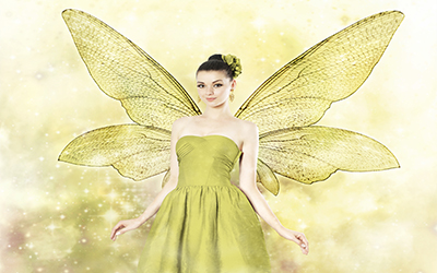 An image of a fairy